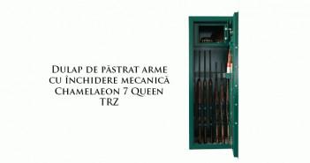 Dulap de păstrat arme cu închidere mecanică de calitate